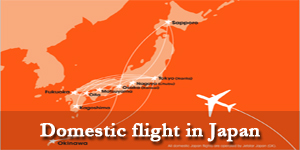 domestic-flight-in-japan