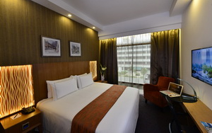 hotel grand central orchard executive king