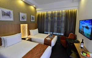 hotel grand central orchard executive twin